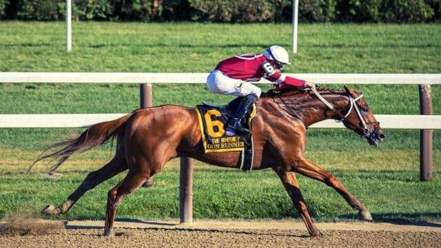 Μιλάμε για ΠΟΛΛΑ λεφτά: Οι πλουσιότεροι αθλητές… είναι πάνω στο άλογο!